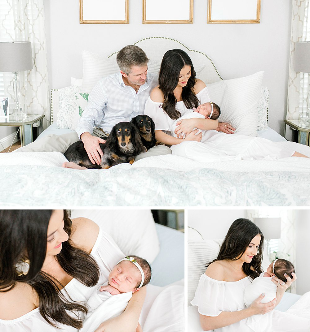 Lifestyle Newborn Session with dogs